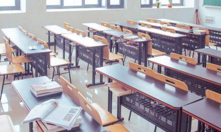 54% wünschen sich innerdeutsche Schüleraustausche