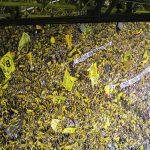56% glauben an Bayern München als kommenden deutschen Fußballmeister