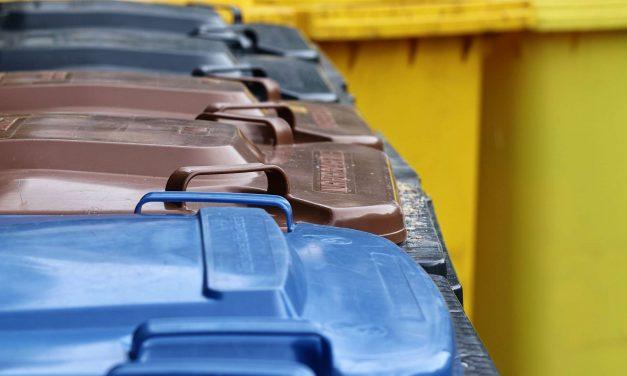 """87% fordern Erlaubnis von """"Containern"""""""