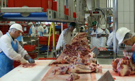48% befürworten Mehrwertsteuersatz-Erhöhung für Fleisch und Wurst