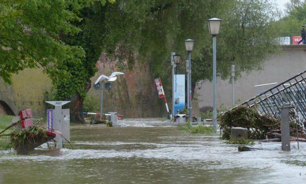 80% befürworten Katastrophen-Warnmeldungen per SMS