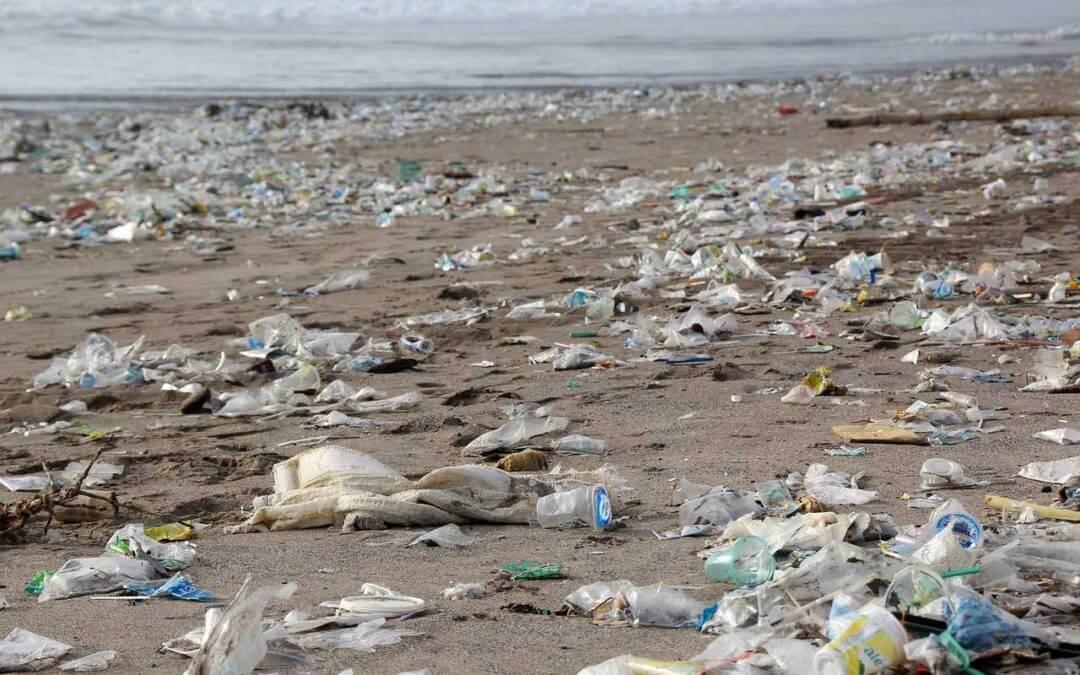 83% sind für Abschaffung von Plastik- und Papiertüten