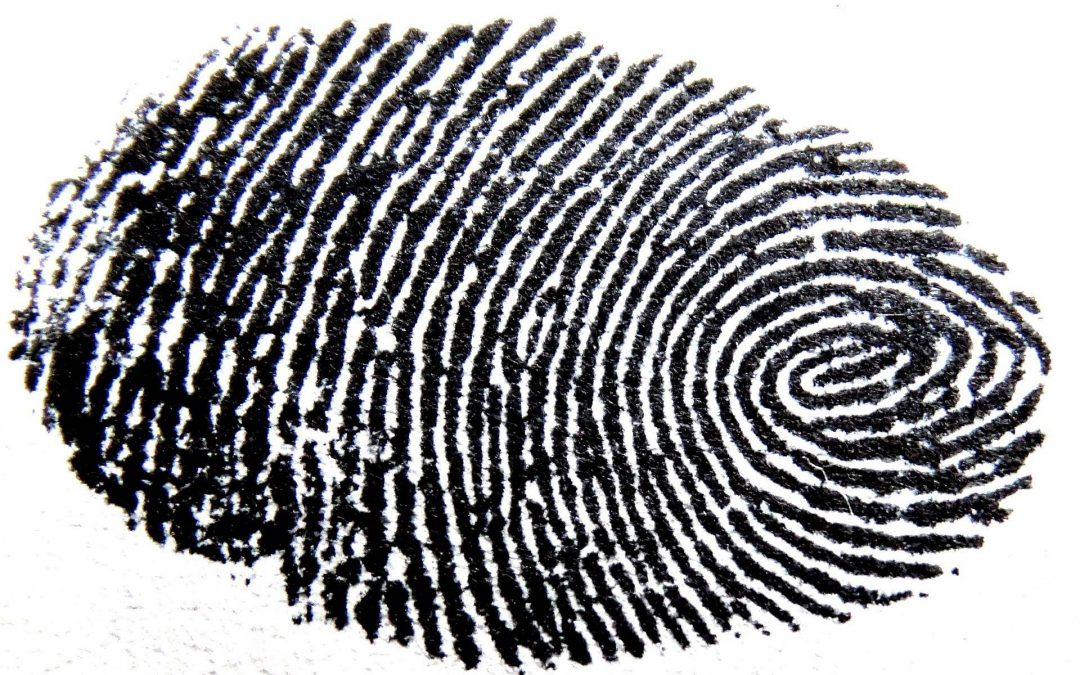 52% wollen Fingerabdrücke auf Personalausweisen speichern lassen